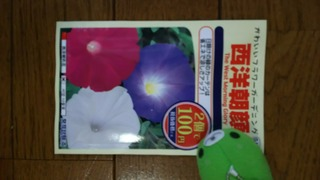 DSC_0018-d2bf7.JPG